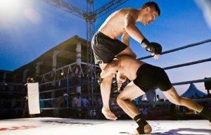 Индивидуальные тренировки по ММА в Видном