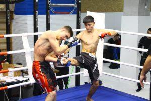 Пробная, бесплатная Тренировка по Микс Файту клуб Tigris