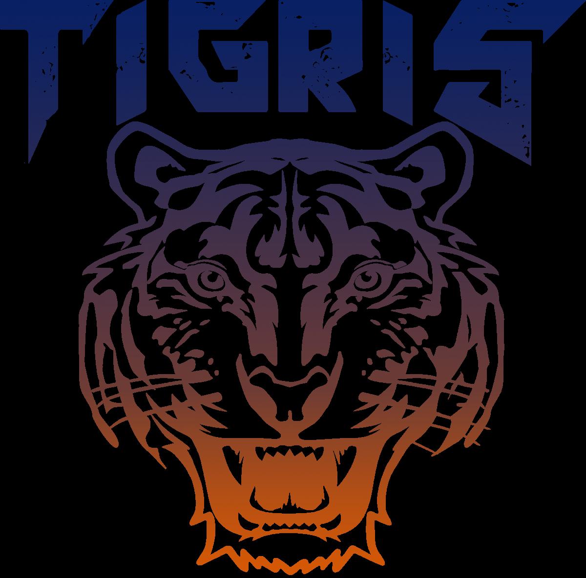 Клуб смешанных единоборств TIGRIS